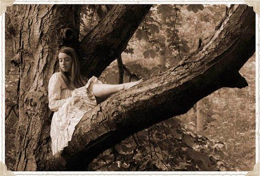 arbre-robe