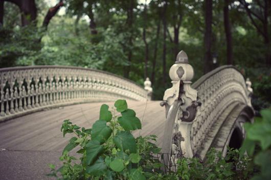 bridge-central-park