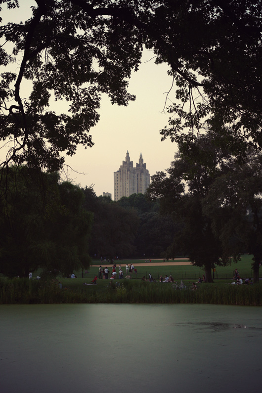 dawn-central-park