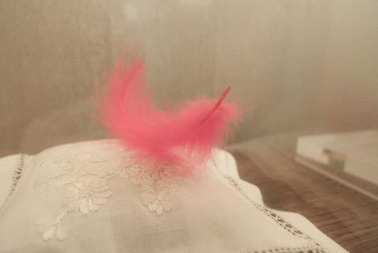 pink-plum