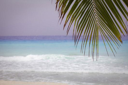 turquoise mer