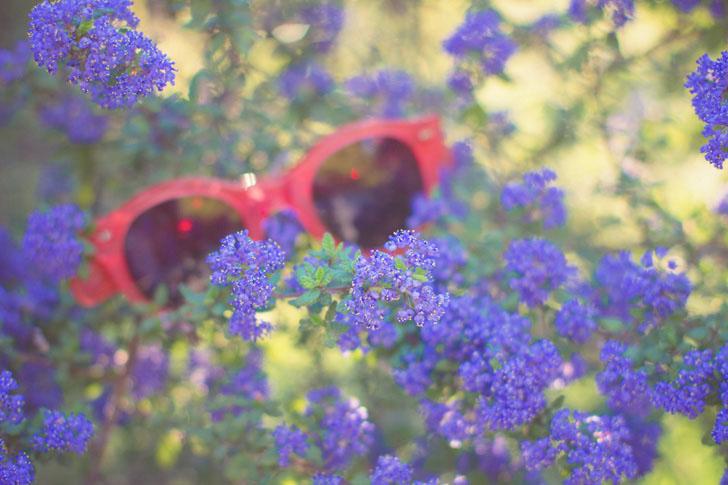 lunettes soleil cacharel