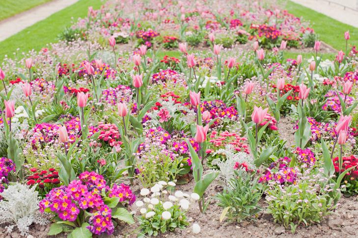 jardin du luxembourg (11)