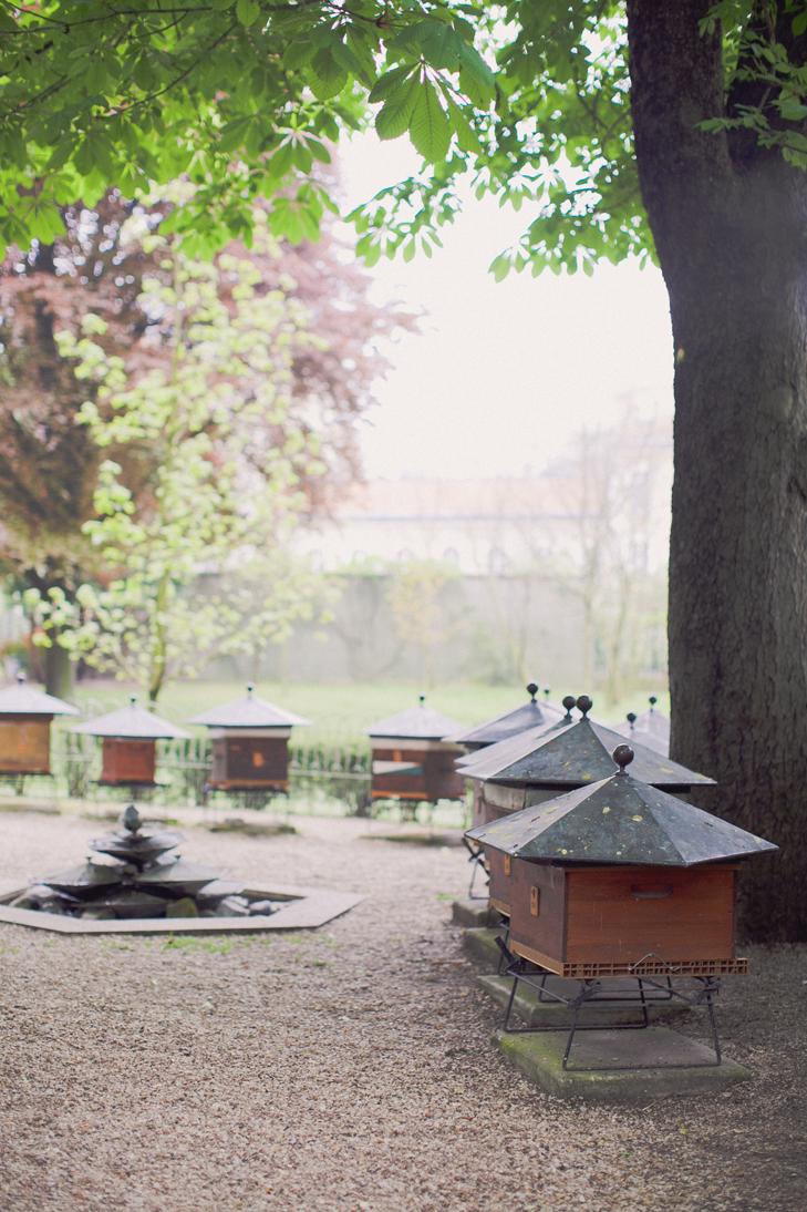 jardin du luxembourg (30)