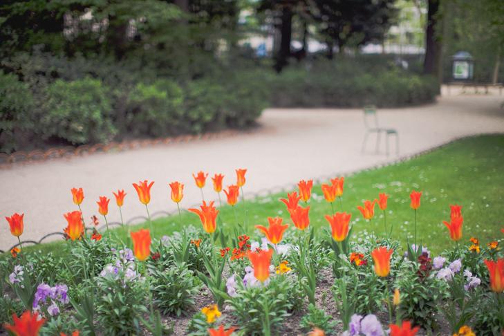 jardin du luxembourg (32)