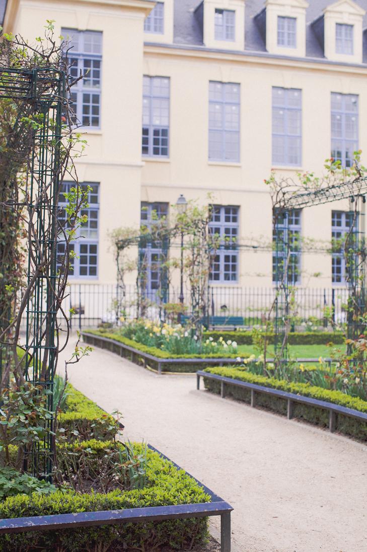 jardin de roses (10)