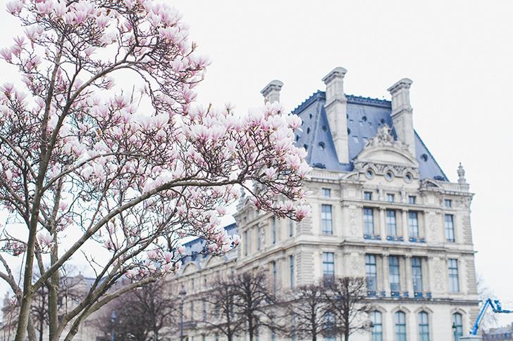 www.leblogdelamechante.fr (10)