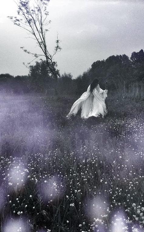 Fairy-tale-00001