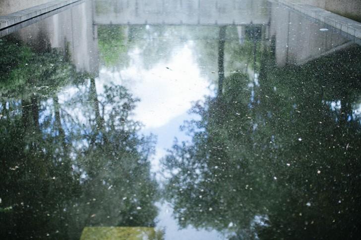 jardin bercy-45