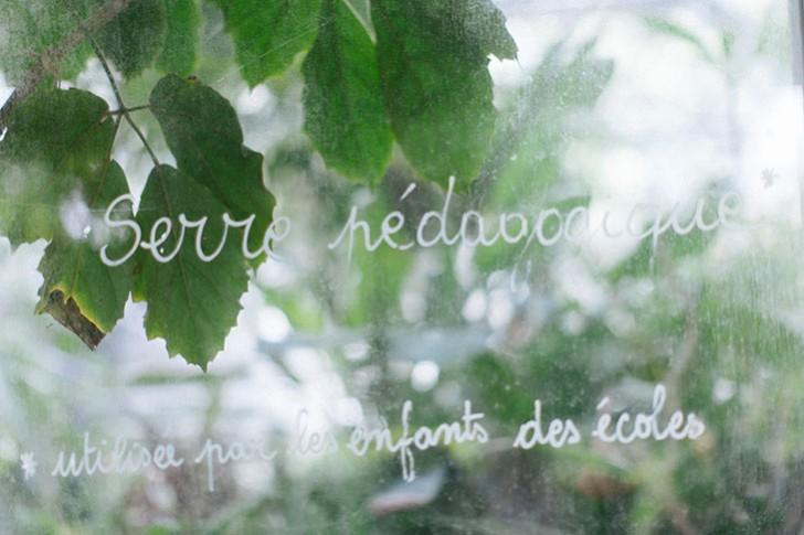 jardin bercy-6