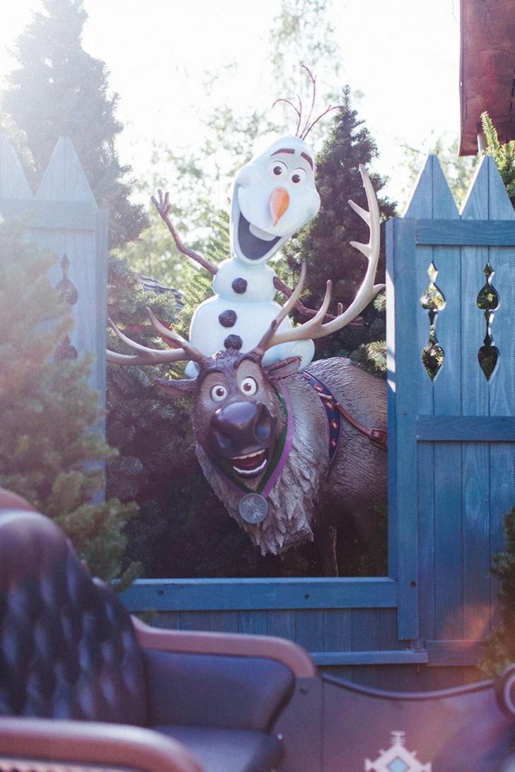 Disneyland paris 2015-79