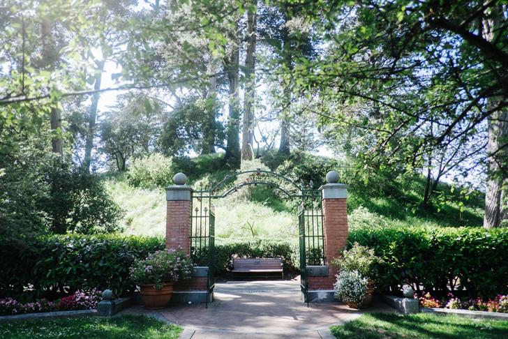 Golden-gate-park-00003