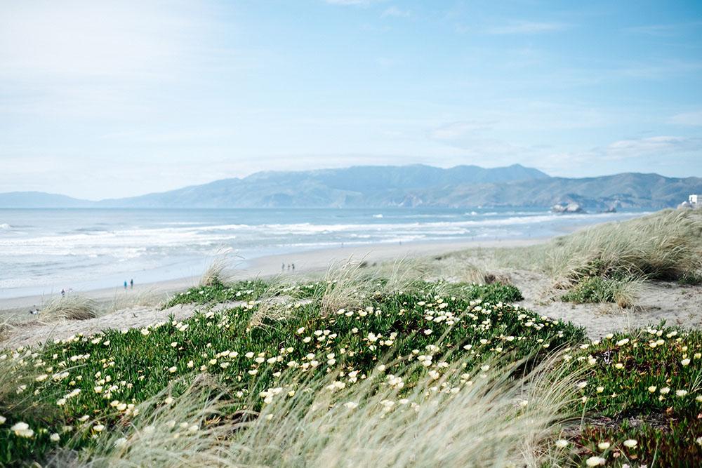 Ocean-beach-00001