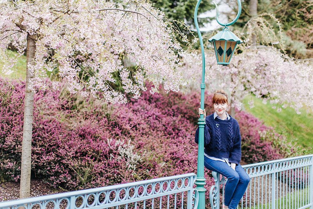 Disneyland spring 2016-16