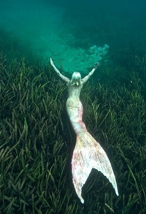 Mermaid-00009