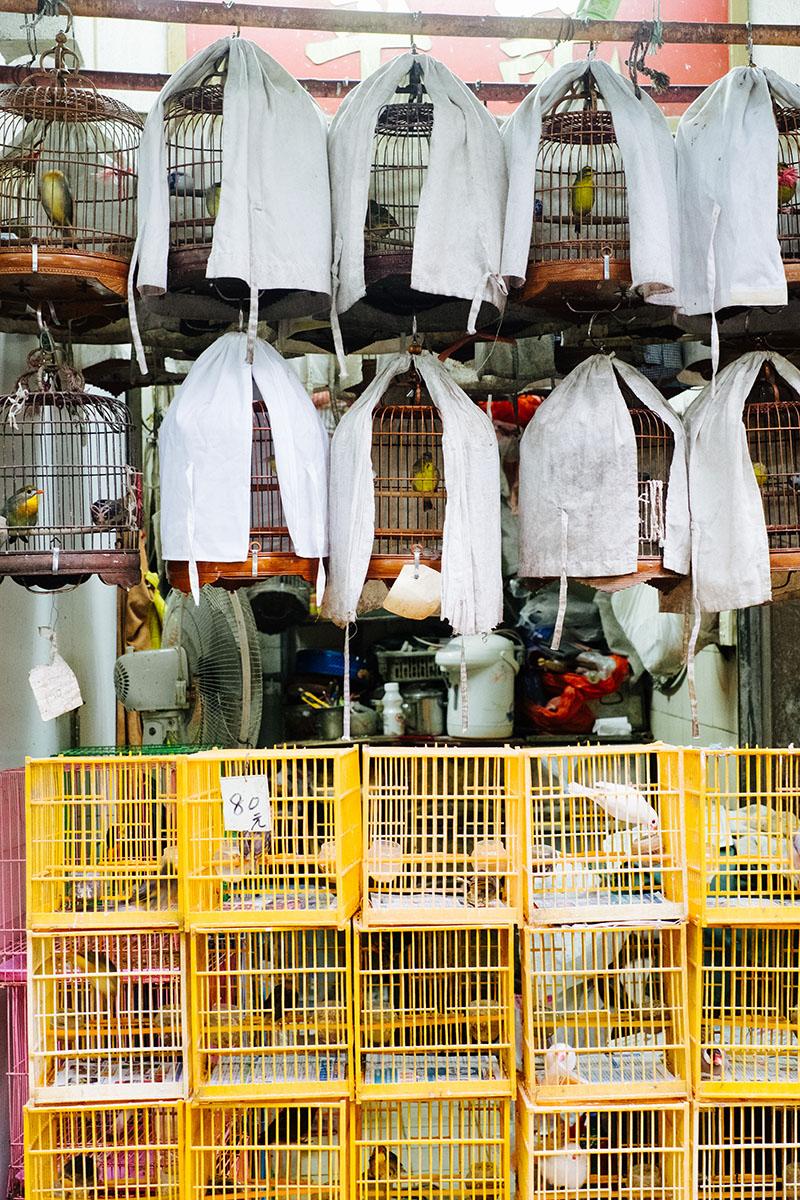 Voyage A Hong Kong Mong Kok 00016